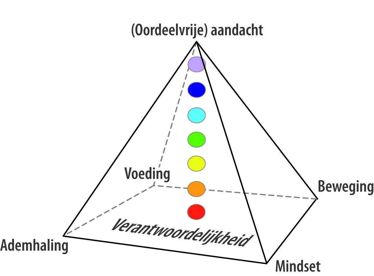 Piramide van Inzicht ontwikkeld door trainer Evert Heinz